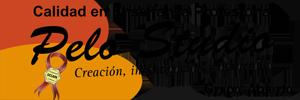 Logo Pelo Studio